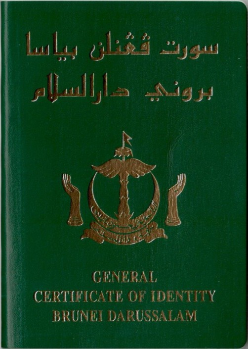Immigration Travel Document